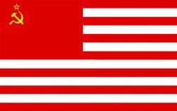 amsoc_flag