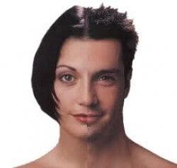 berkeley-transsexual