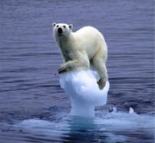 Think of yourself as the polar bear, tenuously clinging to life on a dying planet. Waaaaa.