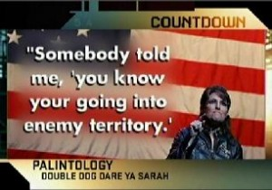 MSNBC-palin-idiot-your-graphic
