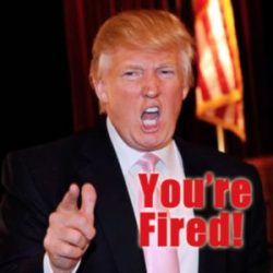 trump-youre-fired-300x300