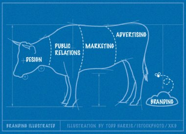 branding-illustrated