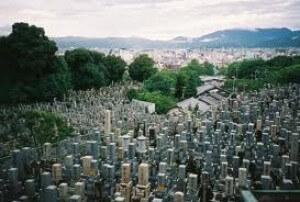 democrat-graveyard