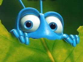 indian-super-bug
