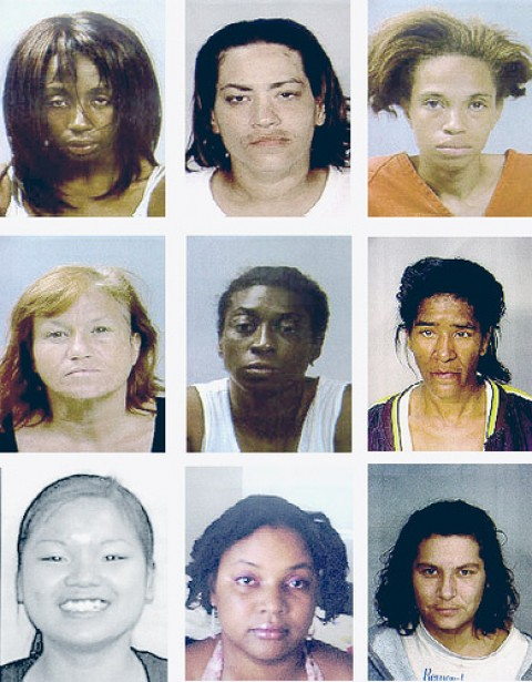 These are either mug shots of women arrested for prostitution in St Paul, Minnesota or Democrat members of congress. Tough to tell the difference.