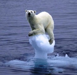 Polar bears are united in opposition to Iranian democracy